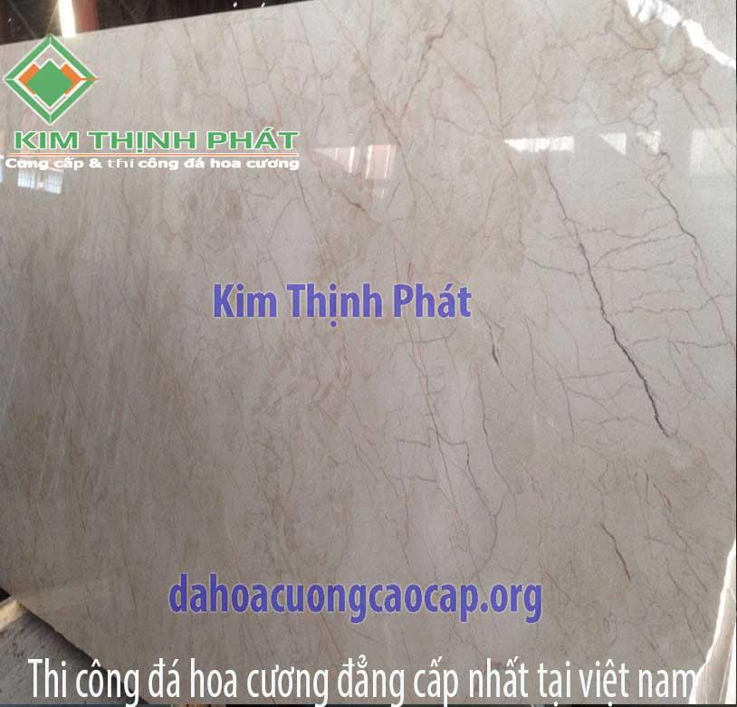 dahocuongcaocap.org-ms0004