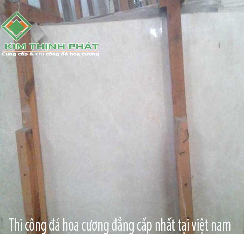 dahocuongcaocap.org-ms0020