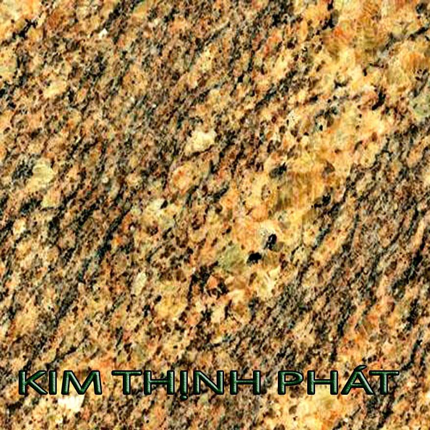 dahocuongcaocap.org-ms0067