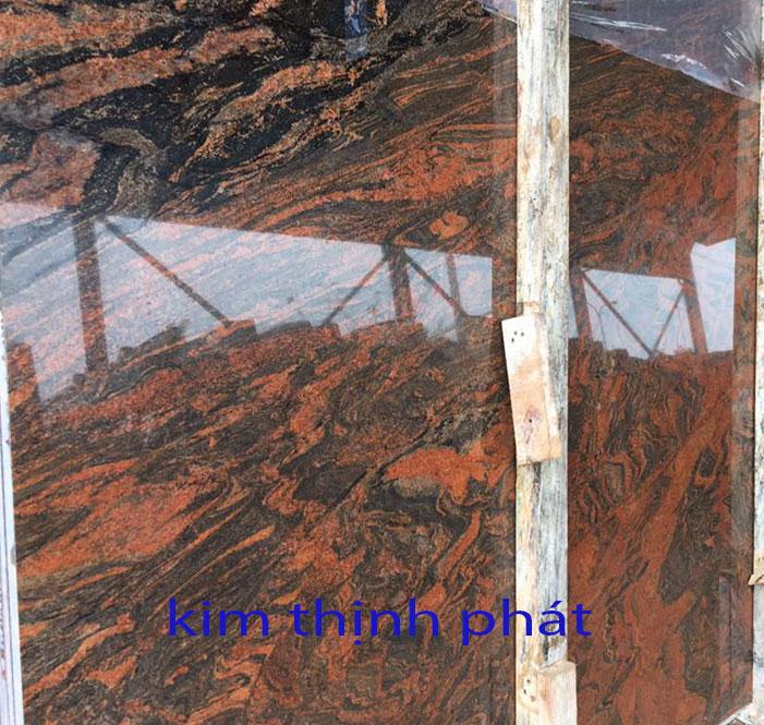 dahocuongcaocap.org-ms0089
