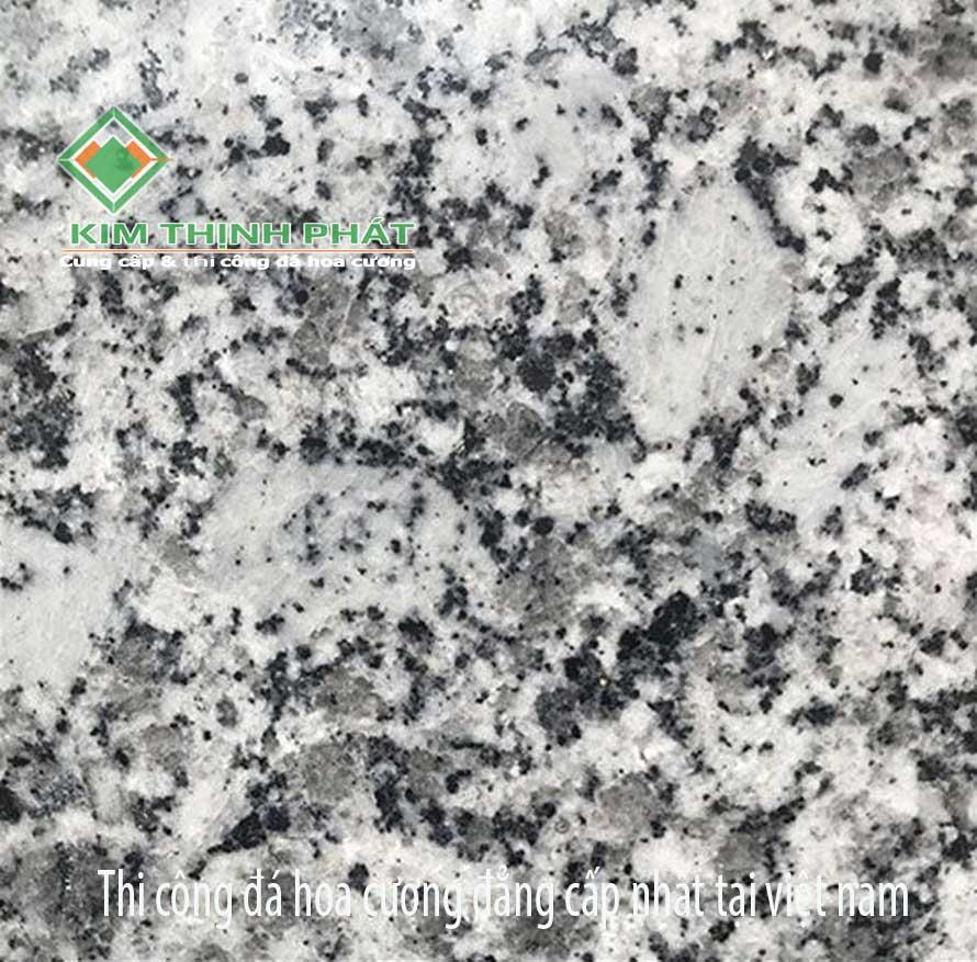 Giá đá hoa cương trắng đắc nông